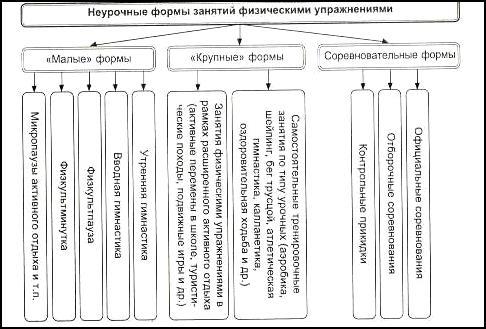 формы построения занятий в физическом воспитании